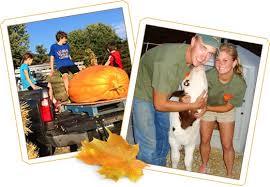 Pumpkin Farms In Channahon Illinois by Heap U0027s Giant Pumpkin Farm U2013 A Family Run Farm In Minooka Il