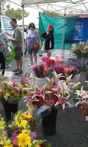 Flowers At San Jose Blossom Hill Farmers Market