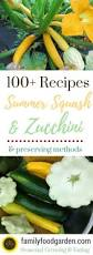 Storing Pumpkin Pieces by 25 Best Freezing Squash Ideas On Pinterest Freezing Yellow