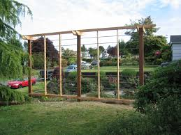 35 Best Fences And Walls Images On Pinterest   Bus Shelters ... Backyards Splendid Simple Arched Trellis For Grapes Or Pole Backyard Hop Outdoor Decorations Pictures On Excellent Wondrous Arbor Ideas 41 Grape Vine How To Build Grapevine Trellis Bountiful Pergola My Kiwi That I Built From Diy Itructions Things How Build A Raspberry Youtube Grape Vine Roselawnlutheran Stunning Vines Design Over Spaces Noteworthy