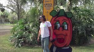 Pumpkin Patch Orlando Fl by Green Meadows Farm Tour And Pumpkin Patch Youtube