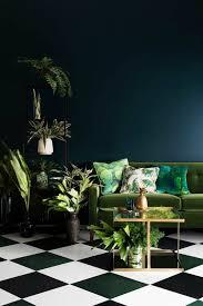 plante chambre la plante verte d intérieur archzine fr