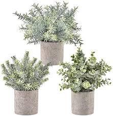 krelymics 3 stück künstliche pflanzen mini kunstpflanzen künstliche eukalyptus pflanzen mit töpfen für home schreibtisch küche badezimmer garden deko
