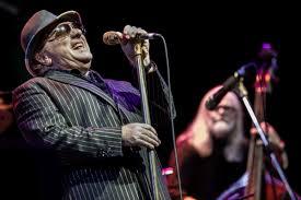 100 Tedeschi Trucks Band Setlist Van Morrison Willie Nelson Played Forest Hills Stadium Pics