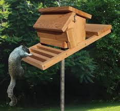 Free Bird Table Plans by Plans For Small Goat Shed Build Cheap Wood Shed Squirrel Free