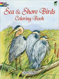 Sea And Shore Birds Coloring Book By Ruth Soffer Books