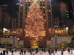 Rockefeller Center Christmas Tree Fun Facts by Janie U0027s Pocono Mountain Garden December 2014