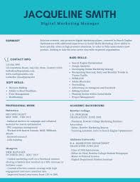 Digital Marketing Manager Resume Example