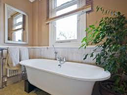 Plants For Bathrooms With No Light by Choose The Right Plants For Your Bathroom Builders
