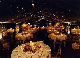 Starry Lights Available On Amazon Over Dance Floor Or Outside Somewhere Barn Party DecorationsDecorations For WeddingsWedding