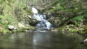 Hike to Jones Run and Doyles River Falls Shenandoah National Park