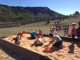 Pumpkin Patch In Colorado Springs Co 2013 a visit to the colorado pumpkin patch in larkspur