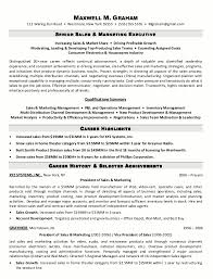 Sample Resume Senior Sales Marketing Executive