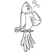 Canary Bird Singing Coloring Pages