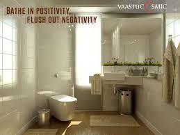 Plants In Bathroom Feng Shui by Plants In Bathroom Vastu 100 Images 64 Best Plants Bathroom