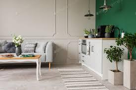offener raum küche und wohnzimmer interieur in kleinen studio wohnung foto bialasiewicz auf envato elements
