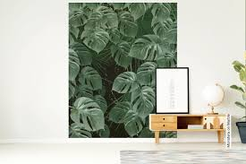 monstera on marble