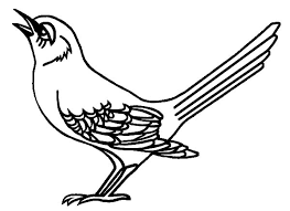 Tennessee Mockingbird Is Singing Coloring Pages