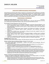Two Page Resume Examples From Bullet Point Template Or Administrative Services Manager