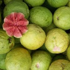 29 best guava bonsai tree images on pinterest fruit trees