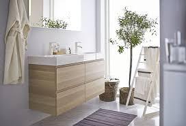 pflanzen für das badezimmer bauemotion de