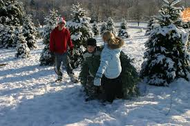 Photo By Indiana County Christmas Tree Growers Association