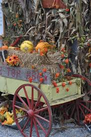 Swan Pumpkin Patch Snohomish by 232 Best Halloween U0026 Pumpkin Patch Images On Pinterest Halloween