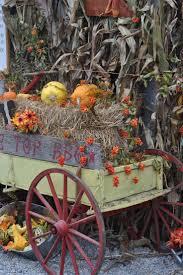 Swans Pumpkin Farm Hours by 232 Best Halloween U0026 Pumpkin Patch Images On Pinterest Halloween