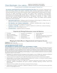 Information Technology Security Resume Examples Unique Ficer Sample Analyst