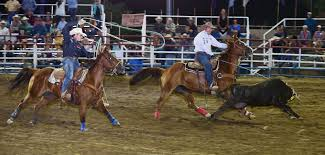 Rodeo: Arizona Ropers Keep Chugging Along | The Daily Courier ... Rodeo Champions Driver Does Much More Than Drive Members Photo Gallery 43rd Annual Cherokee Chamber Of Commerce Prca Wgrzcom Star Tries To Rebound From Injury 2017 Carlin Family Produced By Vl Productions And Timeline Buffalo Championship Barnes Sons Company Home Facebook Pit Boys News North Coast Journal Jake Clay Obrien Cooper At The 2014 Wrangler National Reaching For Success With The Team Roping 7x World Champion Saddle Poster Carson Valley Times American Cowboy Western Lifestyle