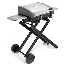 Patio Bistro 240 Gas Grill by Cuisinart All Foods Roll Away Gas Grill Stainless Steel Cgg