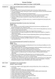 Business Development & Strategy Resume Samples | Velvet Jobs New Business Development Resume Samples Velvet Jobs 7 Business Owner Resume Sample Fabuusfloridakeys Development Manager Erhasamayolvercom 93 Objective 011 Mla Format Essay Sample Example Writing Director Strategy Manager Guide 12 Mplates Pdf Sales Representative Free 2019 Program Finance Fpa Devops