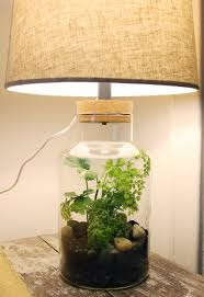 Crystal Heart Lamp Terraria by Home Rain Forest Love It Jungle Drums Pinterest Rain