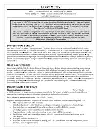 Resume Of A Call Center Agent Example