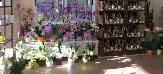 vitrine fete des meres fleuriste fleuriste à achères