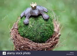100 King Of The Frogs Stock Photos Stock Images Alamy