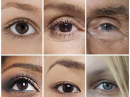 Halloween Contact Lenses Uk by 10 Practical Tips And Foods For Healthy Eyes The Independent
