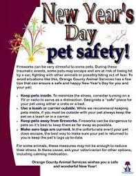 winrock animal clinic 40 pet laws from around the world infographic animal