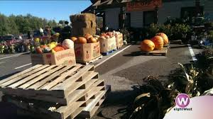 Pumpkin Patch And Hayrides Grand Rapids Mi by Get Your October On Kicking Off Fall Fest At Harder And Warner