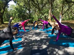Best Outdoor Yoga Classes In The San Francisco Bay Area