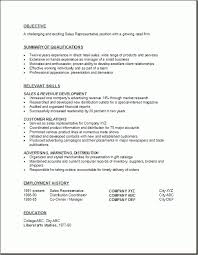 Insurance Sales Representative Sample Resume Amazing Httpresumecareer