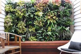 Best Plant For Bathroom Feng Shui by Create Great Feng Shui With Vertical Wall Gardens