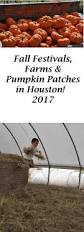 Pumpkin Patch Houston Tx Area by Fall Festivals Farms U0026 Pumpkin Patches U2013 Things To Do In Houston