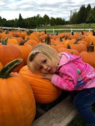 Pumpkin Patch Northwest Arkansas 2015 by Don U0027t Miss These 10 Great Pumpkin Patches In Wisconsin
