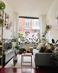 9 desain ruangan berkonsep jungle yang adem dan