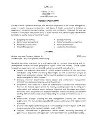 Resume Sample Summary Statement Awesome Team Leader Call Center For A Leadership Examples