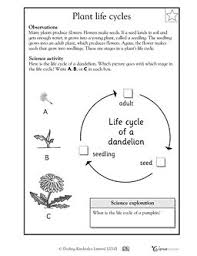Life Cycle Of A Pumpkin Seed Worksheet by 225 Best Science Images On Pinterest Homes And Medium