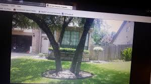 Fresh Design Of Craigslist San Antonio Tx Pets - Best Home Design ... Unauthorized Sales Of Cars Are Targeted Expressnewscom Craigslist San Antonio Used Cars Unique Austin Owner Farm And Garden Awesome Old Fashioned Www Phoenix Com Trucks By For Sale Best Car Information 2019 20 Tx Interesting A 1920 New Update Garage Inspirational Sales St Louis Beville Lowering 731987 Chevrolet Truck Hot Rod Network Khosh