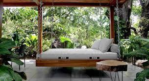 pflanzen im schlafzimmer grünes licht fürs schlafklima