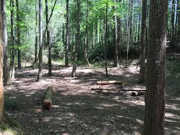 Rabbit Creek Trail